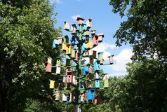 Группа в составе ложи для коробки вложенности †птиц « Стоковое Изображение RF