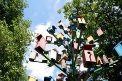 Группа в составе ложи для коробки вложенности †птиц « Стоковая Фотография RF