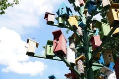 Группа в составе ложи для коробки вложенности †птиц « Стоковое Фото
