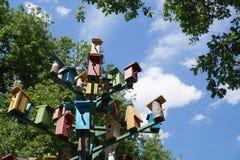 Группа в составе ложи для boxesg вложенности †птиц « Стоковая Фотография