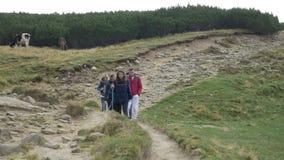 Группа в составе подростковые друзья идя вдоль пути тропы наслаждаясь отключением горы и ландшафтом природы коров - видеоматериал