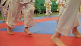 Группа в составе подростки karateka в кимоно бежит на tatami в спортзале видеоматериал
