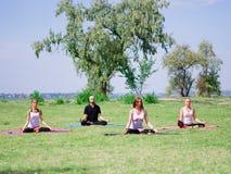 Группа в составе профессиональные yogis размышляет в парке города Стоковые Изображения RF