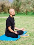 Группа в составе профессиональные yogis размышляет в парке города Стоковое Изображение RF