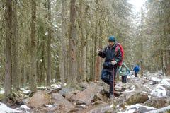 Группа в составе путешественники в скалистом лесе Стоковое Фото