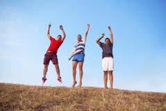 группа в составе друзья имеет потеху скача совместно Стоковое фото RF