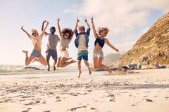 Группа в составе друзья на каникулах пляжа Стоковое Изображение