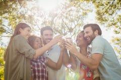 Группа в составе друзья провозглашать стекла пива в парке Стоковые Изображения