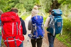 Группа в составе друзья с пешим туризмом рюкзаков Стоковое фото RF