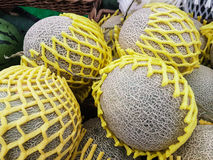 Группа в составе свежие органические зеленые дыни канталупы и большой шарик с Стоковое фото RF
