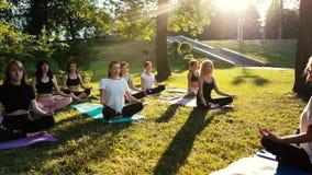Группа в составе смешанные женщины возраста практикует йогу и размышляет в восходе солнца промежутка времени парка сток-видео