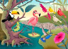 Группа в составе смешные тропические птицы в джунглях иллюстрация штока