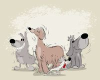 Группа в составе собаки шаржа Стоковое Изображение RF