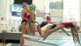 Группа в составе спортсмены девушек ныряет в бассейн в то же время видеоматериал