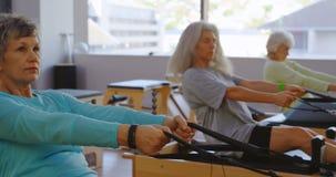 Группа в составе старшие женщины делая протягивающ тренировку 4k акции видеоматериалы