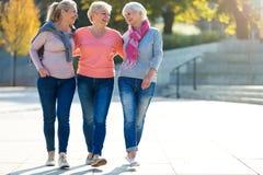Группа в составе старший усмехаться женщин стоковое изображение rf