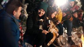 Группа в составе счастливые друзья сидя в лесе зимы огнем и есть зефиры Молодая женщина flirting и усмехаясь сток-видео