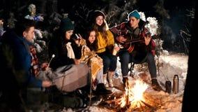 Группа в составе счастливые друзья сидя в лесе зимы огнем и есть зефиры Молодой человек играя гитару тепло акции видеоматериалы