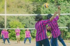Группа в составе счастья подростковые друзья играя волейбол Стоковые Изображения RF