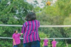 Группа в составе счастья подростковые друзья играя волейбол Стоковые Фото
