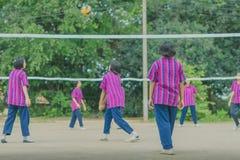 Группа в составе счастья подростковые друзья играя волейбол Стоковая Фотография RF