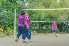 Группа в составе счастья подростковые друзья играя волейбол Стоковое Изображение