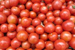 Группа в составе томаты Стоковая Фотография