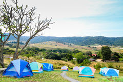 Группа в составе туристский шатер Стоковые Фотографии RF
