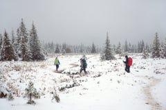 Группа в составе туристы взбираясь гора стоковое изображение