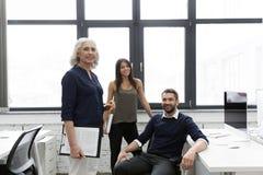 Группа в составе усмехаясь бизнесмены работая совместно Стоковое Фото