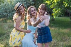 Группа в составе фото selfie взятия подруг Стоковое Изображение