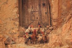Группа в составе цыплята стоя снаружи перед дверью стоковая фотография
