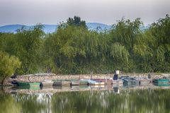 Группа в составе шлюпки причалила в доке на озере с большим зеленым цветом t стоковое фото rf