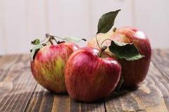 Группа в составе 3 яблока Стоковое Изображение RF