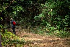 Группа в составе hikers идя в горы стоковые изображения rf