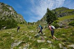 Группа в составе hikers на горной тропе Стоковые Фотографии RF
