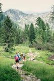 Группа в составе hikers на следе Стоковые Фотографии RF