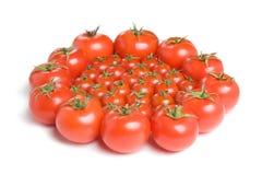 Группа в составе tomatoes-1 Стоковые Фотографии RF