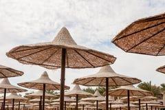 Группа в составе umrellas пляжа соломы Стоковые Изображения