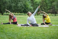 Группа в составе yogis в природе выполняет дышая тренировки Стоковая Фотография