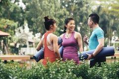 Группа в составе yogis Стоковая Фотография