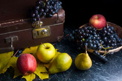 Группа голубых виноградин и зрелых плодоовощей на темной мраморной предпосылке Стоковая Фотография RF