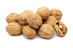 Группа грецкого ореха стоковые фотографии rf