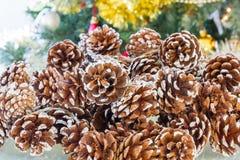 Группа декоративных конусов сосны flecked с белизной стоковое изображение rf