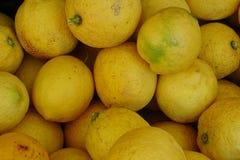 Группа лимона от рынка Стоковое Изображение RF