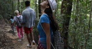 Группа людей с рюкзаками идя через древесины, туристов на вид сзади задней части пути леса похода Trekking видеоматериал