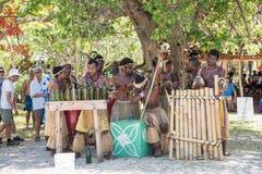 Группа музыки острова стоковое изображение rf
