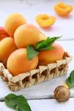 группа плодоовощ абрикоса Стоковая Фотография RF