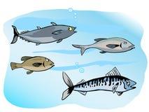 Группа рыб Стоковые Фотографии RF
