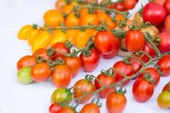 Группа томатов вишни на белой предпосылке Стоковая Фотография RF